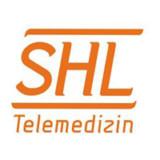 SHL-Aktionär will VR austauschen