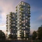 Zug Estates plant Grosses