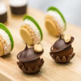 Barry Callebaut wächst erwartungsgemäss