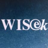 Wisekey rechnet mit starkem Wachstum