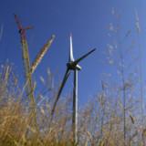 Frischer Wind für Gurit