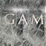 Britischer Abgeordneter reicht Anfrage zu GAM-Fonds ein