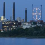Bayer plant Konzernumbau