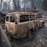 Forstbrände stellen Versicherer auf Probe