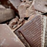 Barry Callebaut schliesst Übernahme ab