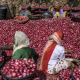 Indien überschiesst Budgetziel erneut