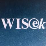 Wisekey kommt in der Schweiz nicht vom Fleck