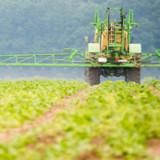 Rückschlag für Bayer in wichtigem US-Glyphosat-Prozess