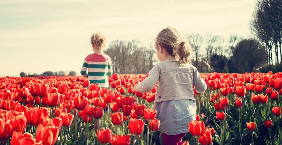 Rang 5: Niederlande (7.488) Glücklich sind auch die Niederländer. Mit dem Frühlingsanfang starte