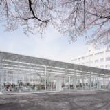 Junya Ishigami: Befreiung der Gebäude