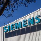 Siemens kappt Wurzeln