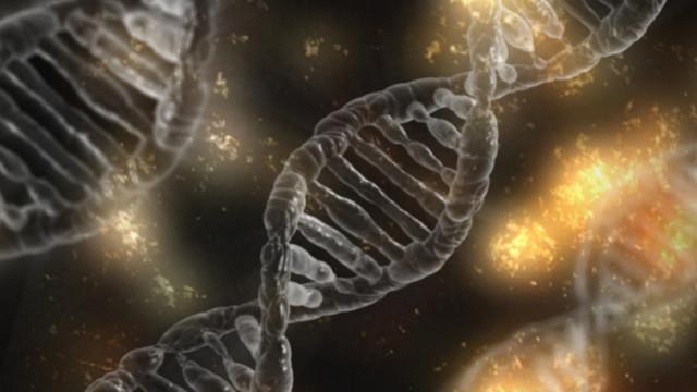Die Zusammenarbeit mit Amgen zahlt sich für Molecular Partners bisher aus.