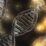 Molecular Partners stärkt Cashposition